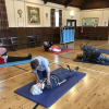 First Aid training May 2017